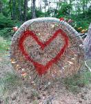 Herz aus Pfeilen